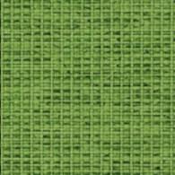 Gravity-vert anis (tissu)