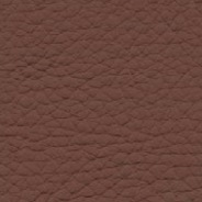 Piel-chocolat (cuir)